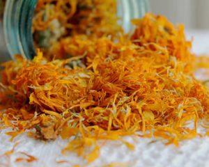 Dry-marigold-petals