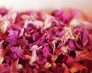 dry-rose-patels