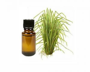 vetriver-oil